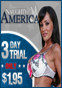 Naughty America Lisa Ann