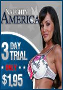 Naughty America Lisa Ann