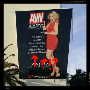 avn awards 2015