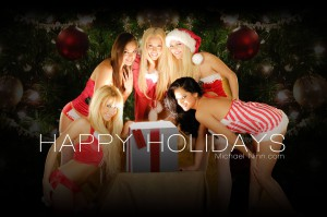 happy holidays 2013 michael ninn